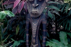Tribal Carving